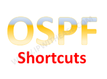network-statement-shortcut-in-ospf