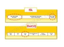 isl-vs-dot1q