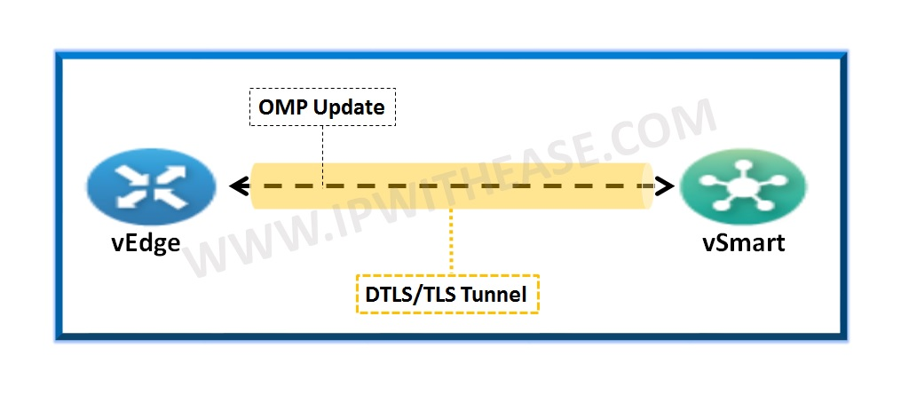 OMP Path Selection Checklist in Viptela | IP With Ease