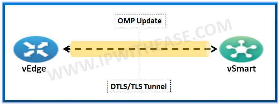 overlay management protocol
