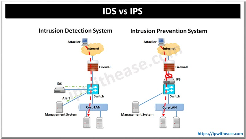 Difference between IPS and IDS